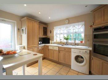 EasyRoommate UK - TWO SPACIOUS Double rooms in a house- Chertsey - Chertsey, North Surrey - £550 pcm