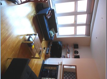 Big Double Room in Smart Town-Center Duplex Flat