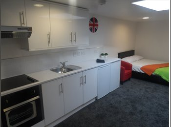 brand new studio house in the area