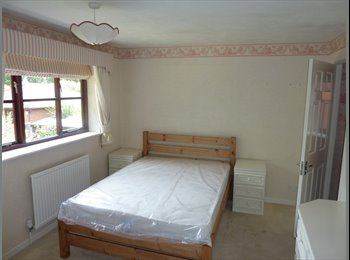 EasyRoommate UK - Super STUDENT House. Right opposite Uni Gates. Suit Group of 6. - St John's, Worcester - £433 pcm