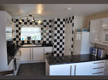 EasyRoommate UK - Double room for single. Fantastic kitchen - Kennington, Ashford - £368 pcm