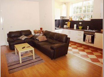 1 lovely bedroom available, ensuite, student/profe