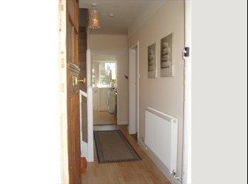EasyRoommate UK - Single room,lovely house,near marina/Uni/hospital, Ipswich - £305 pcm