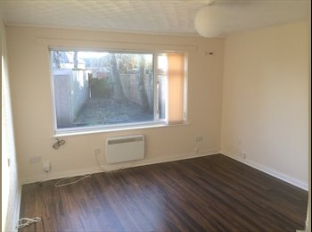Studio Apartment available to rent £380 PCM
