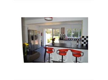 EasyRoommate UK - FRIENDLY PROFESSIONAL  HOUSESHARE TUNBRIDGE WELLS - Tunbridge Wells, Tunbridge Wells - £635 pcm