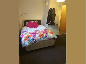 1 bedroom to rent available!