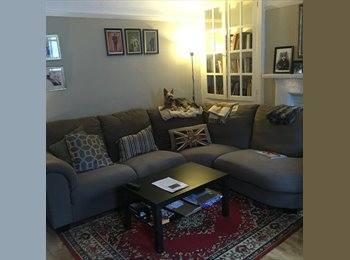 Large double room in beautiful mews flat great central...