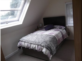 Double Room Available Now in Large Victorian Property
