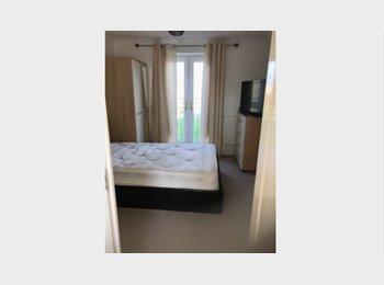 EasyRoommate UK - Stylish executive 3 storey house, Peterborough - £470 pcm