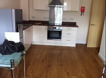 EasyRoommate UK - Luxury Flats available near Leicester UniversityF - Leicester Centre, Leicester - £420 pcm