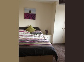 A selection of 3 & 4 bedroom shared apartments