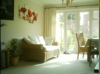 EasyRoommate UK - Smart double room near town - Eastbourne, Eastbourne - £500 pcm