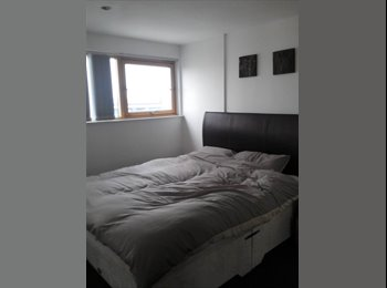 room to rent in 2 bed apartment in clarence docks