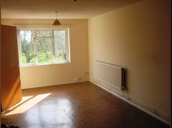 EasyRoommate UK - Choice of rooms in great sharing property - Sands, High Wycombe - £250 pcm