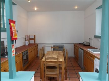 EasyRoommate UK - Boho style STUDENT villa SEPT 2015 - x2 ROOMS LEFT - Mutley, Plymouth - £347 pcm