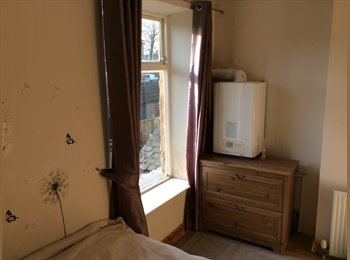 EasyRoommate UK - Room to rent - Mansfield Woodhouse, Mansfield - £300 pcm