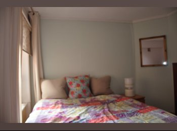 Delightful Large Single Room in Chelsea