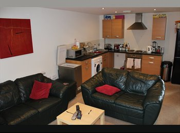 EasyRoommate UK - Room Available in modern appartment - Derby, Derby - £300 pcm