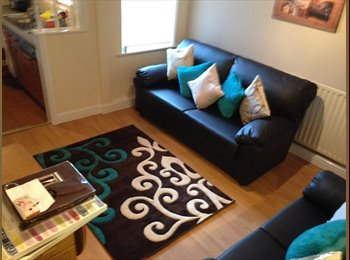 EasyRoommate UK - Newly Decorated Room, Lincoln - £360 pcm