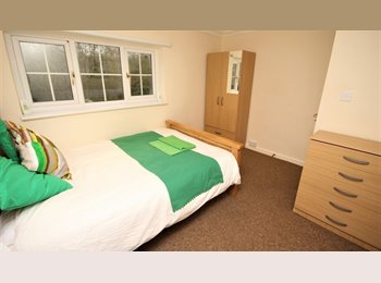 Double Rooms - Close to town centre!