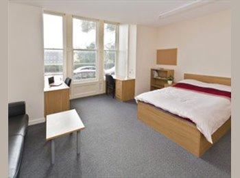 Luxury ensuite room 5 minute walk from University!