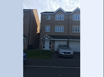 Double and single room in friendly house share