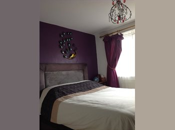 For a professional - lovely furnished double room