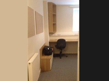 EasyRoommate UK - Big Disabled Ensuite Room for £160 - Tottenham, London - £160 pcm