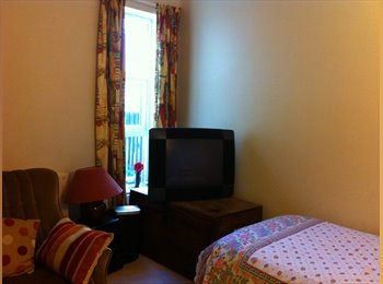EasyRoommate UK - Own large room with single bed Walthamstow - Walthamstow, London - £520 pcm