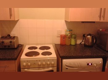 EasyRoommate UK - Housemate needed! Can't pay the rent alone! - St Albans, St Albans - £400 pcm