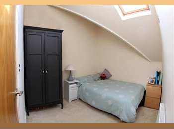 Lovely Double room in a 2 bedroom flat