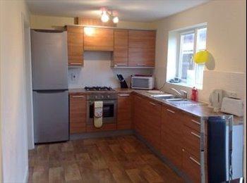 EasyRoommate UK - Attractive Furnished Ensuite Double Room Hampton - Hampton, Peterborough - £425 pcm