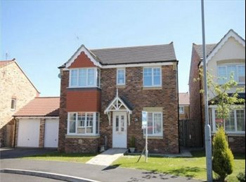 Double Bedroom to let - bills included!