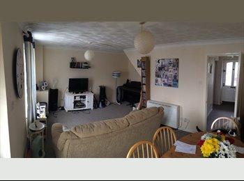 EasyRoommate UK - lovely room in central totnes. - Totnes, Totnes - £340 pcm