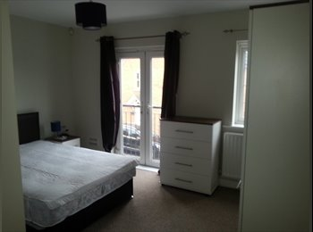 EasyRoommate UK - Great Rooms in a Great House! - Hampton, Peterborough - £450 pcm