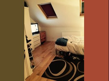 Huge Double Room with En-Suite in Fantastic House