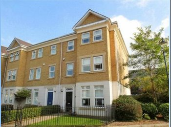House Share in Camberley