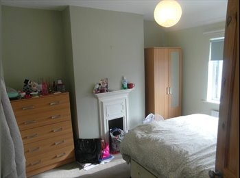 2 bed shared accommodation to rent