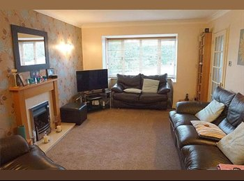 EasyRoommate UK - *** Now Available *** 4 rooms to let in Wootton - Wootton, Northampton - £400 pcm