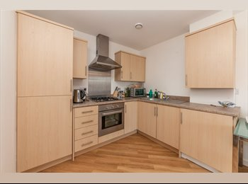 Cosy Double in Furnished 2bed Flat close to tube