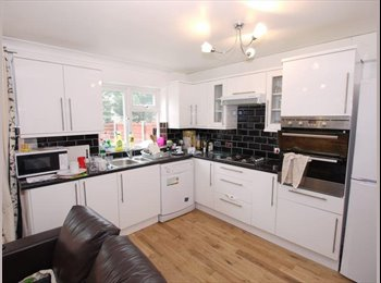 Modern Room in 3 bathroom flat with TV & Internet Close to...