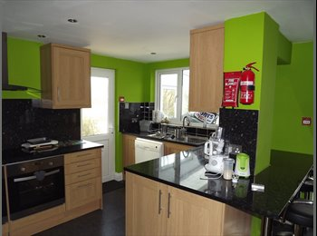 DOUBLE EN-SUITE ROOM in newly refurbished house available