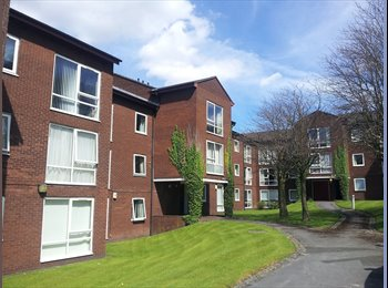 EasyRoommate UK - Nice flat fully equipped near the Stockport center - Stockport, Stockport - £295 pcm