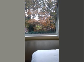 EasyRoommate UK - PEACEFUL PLACE - Colchester, Colchester - £500 pcm