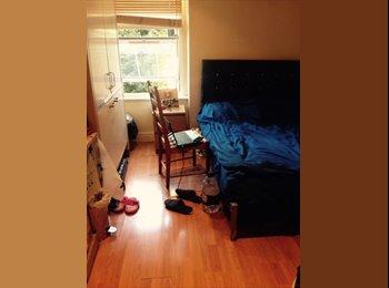 Cosy Double Studio Flat