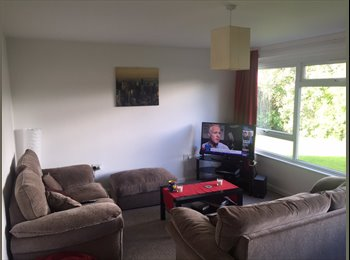 EasyRoommate UK - Double Room in Brentwood Available - Shenfield, Brentwood - £550 pcm