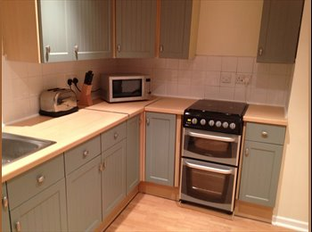 EasyRoommate UK - Double Room in recently refurbished clean happy ho - Mutley, Plymouth - £375 pcm