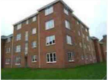 EasyRoommate UK - Double room in Bridgeton to rent :)  - Bridgeton, Glasgow - £315 pcm