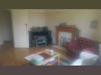EasyRoommate UK - Double room. 15/20 min walk from Station - Chelmsford, Chelmsford - £500 pcm