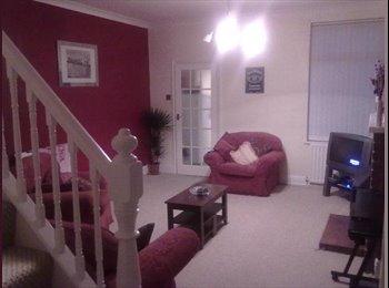 EasyRoommate UK - Large clean modern semi detached - Mansfield, Mansfield - £320 pcm
